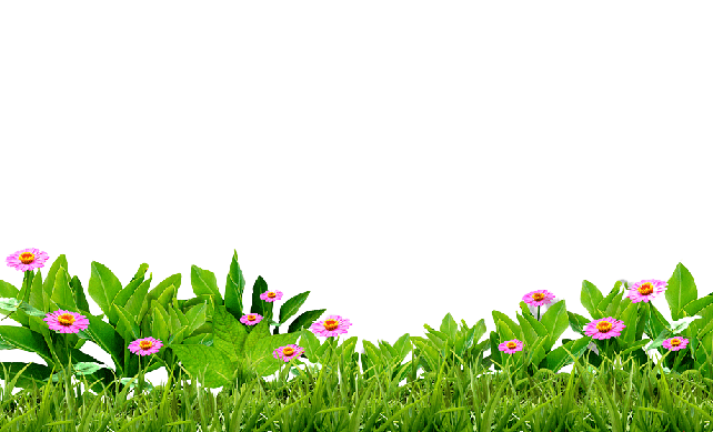 Download Grass Free PNG photo images and Clipart.