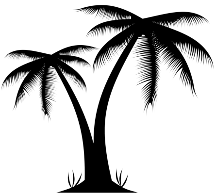 Palm tree PNG images | download free pictures.🌴