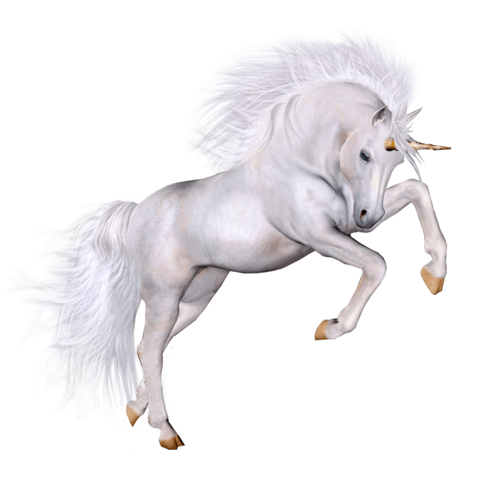 Unicorn PNG images: Download high-quality and best resolution transparent pictures and Cliparts with no background.