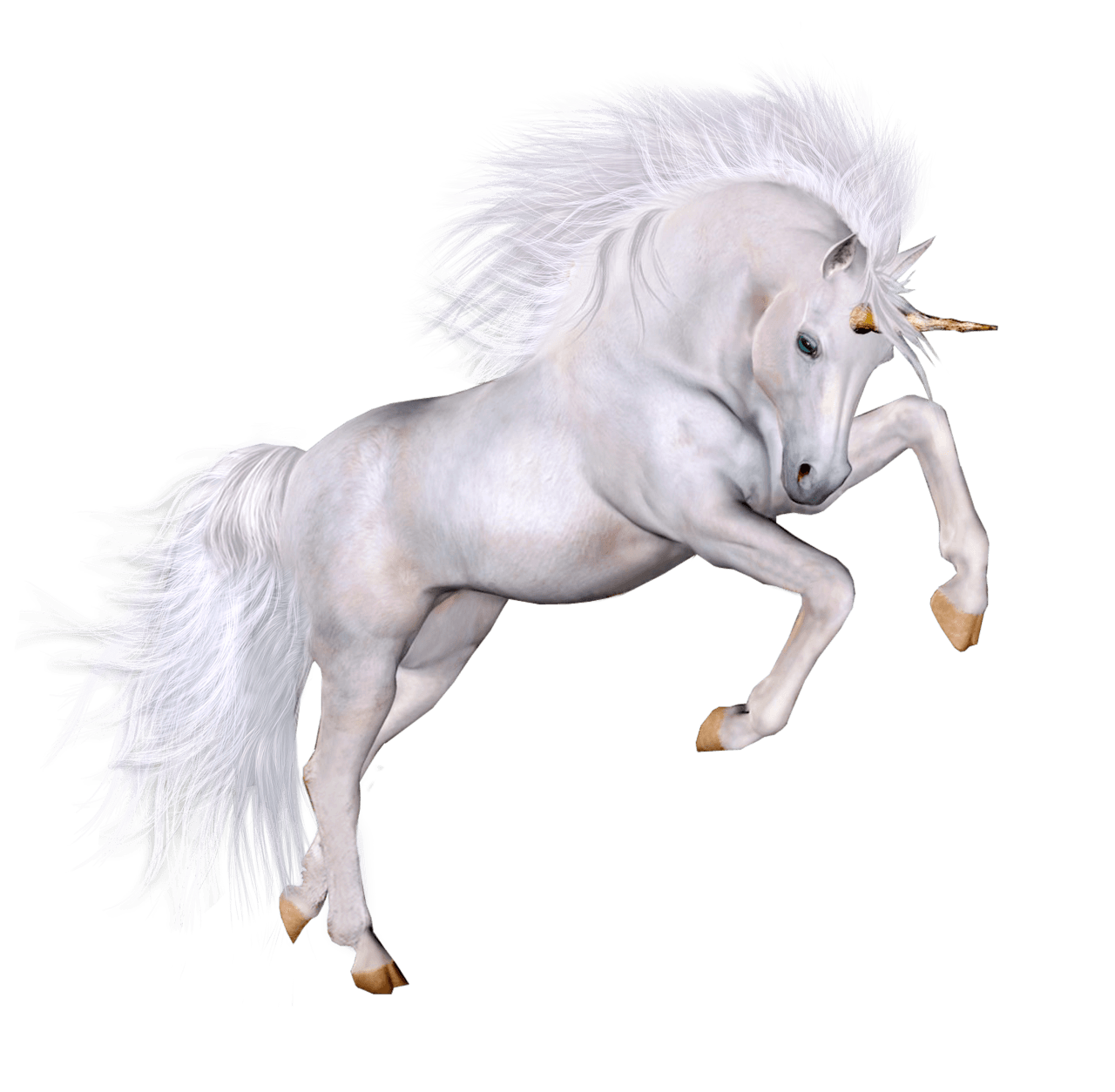 Unicorn PNG | Vector and PSD Files | Free Unicorn PNG🦄